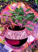 Amazonas-Medizin-Treffen